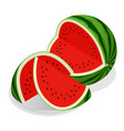 isometric watermelon and pieces refreshing vector image vector image