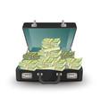 open briefcase full money vector image vector image