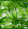 seamless summer pattern with tropical plants vector image