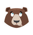 bear surprised emoji grizzly astonished emotion vector image