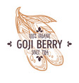 goji berry isolated icon organic exotic food vector image