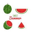 juice watermelon set watermelon icon in a flat vector image vector image