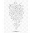 realistic isolated soap bubbles on transparent vector image vector image