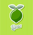 Retro lime vector image vector image