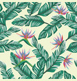 seamless composition tropical banana leaves vector image vector image