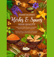 seasoning herbs and spices on wood vector image vector image