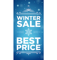 Winter sale and Best prise vector image vector image