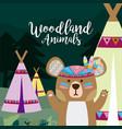 bear wooland animals cartoon vector image vector image