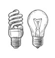 bulb lamp sketch electricity electric light vector image vector image