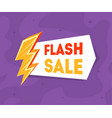 flash sale banner template with golden thunder vector image vector image