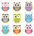 set of colorful owls vector image