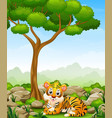 cartoon tiger lay down in the jungle vector image vector image