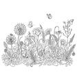 doodle wildflowers butterflies vector image vector image