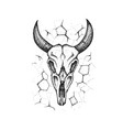 dotwork burnt cow skull vector image