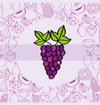 grape fruits nutrition background pattern drawing vector image