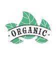 Organic food icon vector image vector image