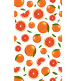 seamless pattern orange fruits and slice vector image vector image