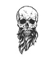 skull with beard and mustache vector image
