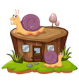 two snails crawling on the stump tree vector image vector image