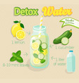 detox cocktail vector image