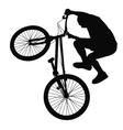 Biker silhouette vector image
