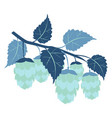 hops plant cartoon colorful flat color vector image