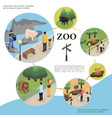 isometric zoo colorful template vector image vector image