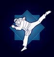 taekwondo jump kick action with guard equipment vector image vector image