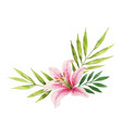 watercolor bouquet with lily flower vector image