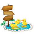 Wooden sign and ducks in the pond vector image vector image