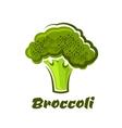 Cartoon fresh green healthy broccoli vegetable vector image