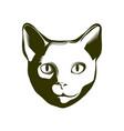 portrait of a cat vector image