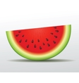 watermelon slice Isolated vector image