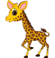 Adorable giraffe character isolated vector image vector image