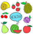 collection stock of fruit various style vector image vector image