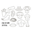 body parts icons set vector image