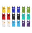 basketball jerseys vector image vector image