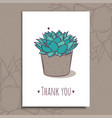 decoration plant succulent polyphilla greeting vector image vector image