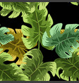 natural seamless pattern with green tropical vector image