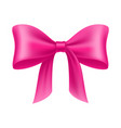 pink bow cartoon isolated vector image vector image