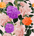 rose seamless pattern vector image