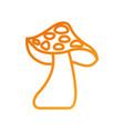autumn mushroom natural flora forest vector image