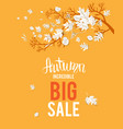 autumn yellow sale image