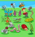 cartoon insects characters group vector image