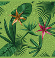 composition tropical plants and flowers in a vector image vector image