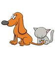 dog and kitten characters cartoon vector image