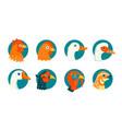 domestic birds icons set vector image
