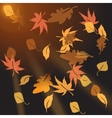 Multi-colored autumn leaves crumbling at sunset vector image vector image