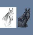 portrait brown bay horse vector image