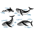 Cartoon sea whales vector image vector image